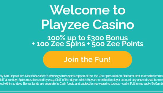 playzee 480 image