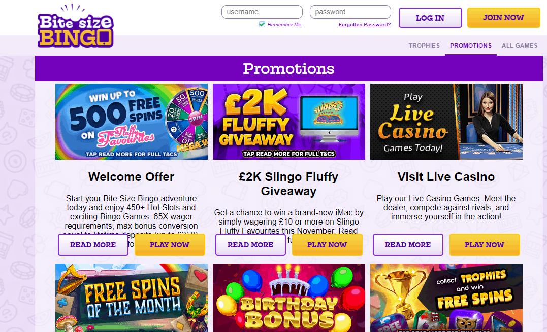 Bite Size Bingo promotion