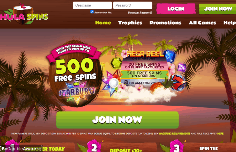 Hula Spins home page