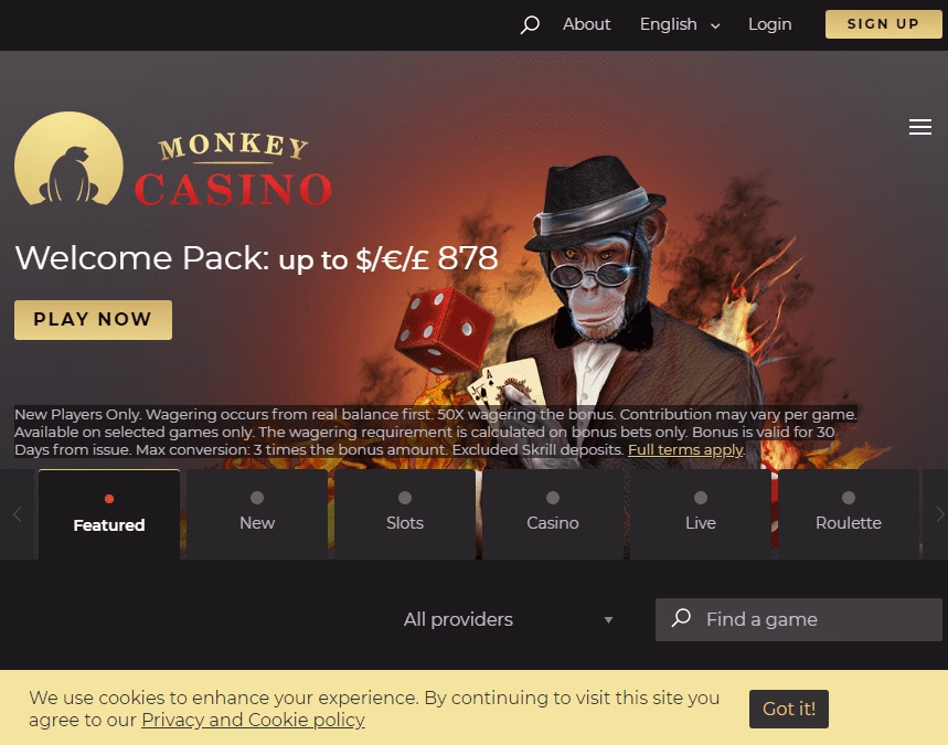 Monkey Casino Image