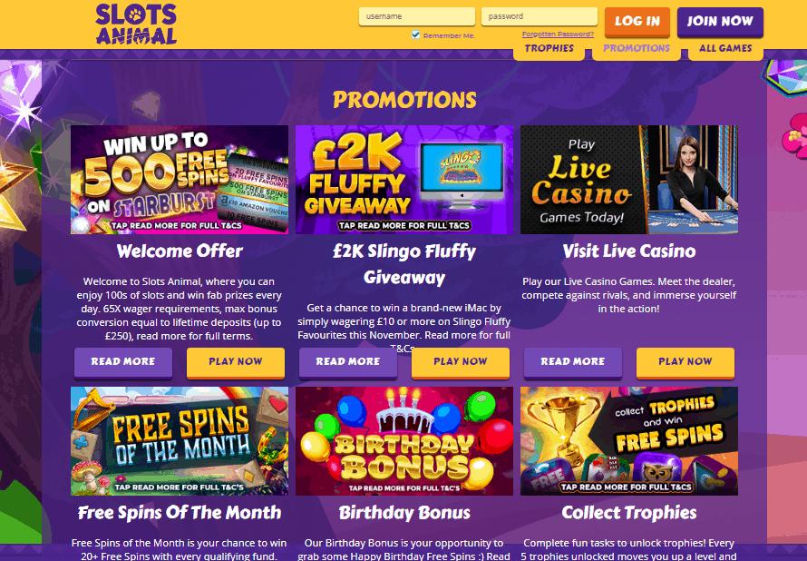 Slots Animal promotions