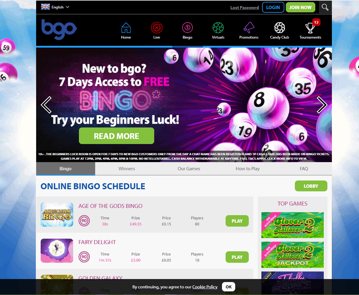bgo bingo home