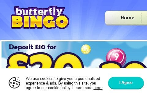 butterfly bingo front image