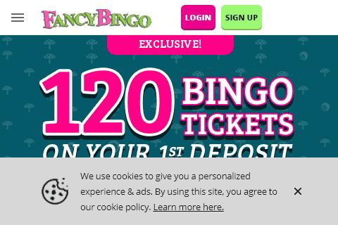 fancy bingo 480 image