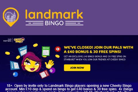cheeky bingo 480 image