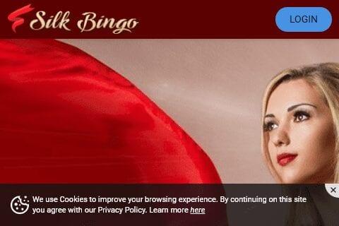 steamy bingo front redirect image