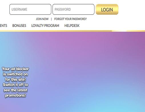 bingocams login page