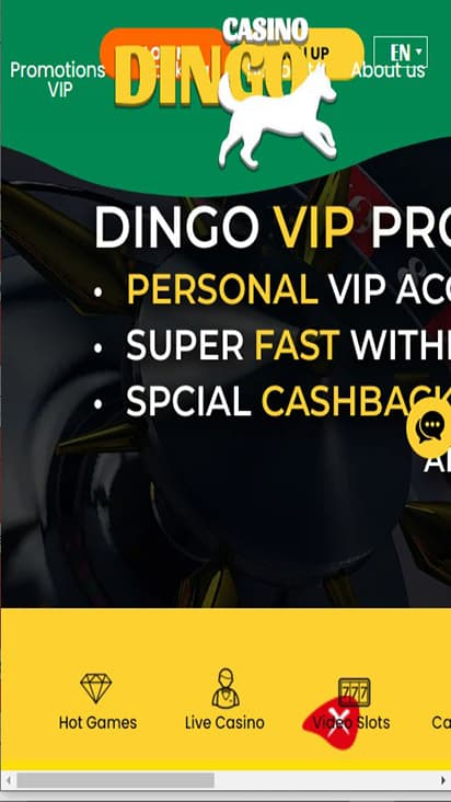 Dingo Casino home mobile