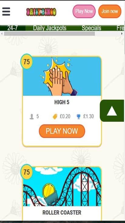 daisy bingo game mboile