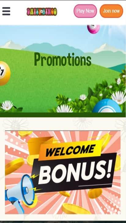 daisy bingo promo mobile