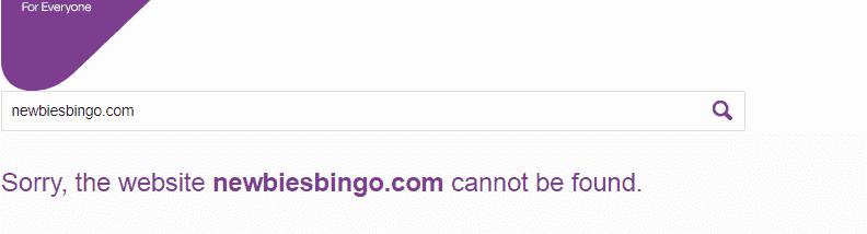 newbies bingo home NA