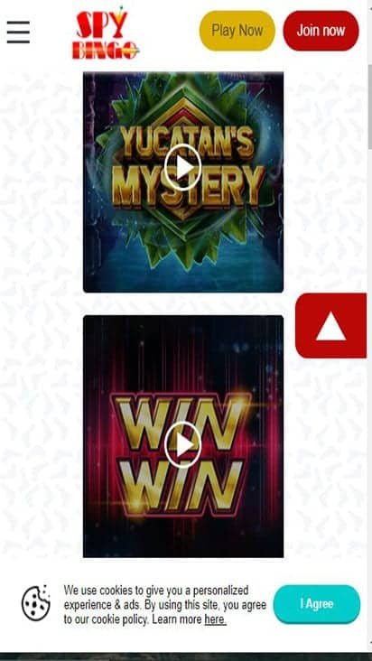 spy bingo game mobile