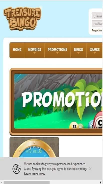 treasure bingo promo mobile0