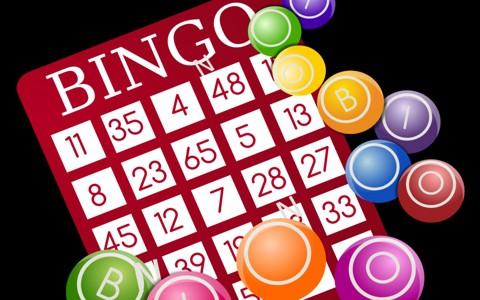 Bingo_guide small