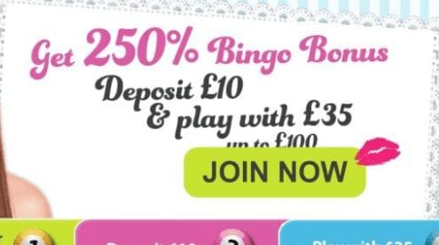 bingo fabulous front image