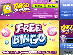 bingo on the box front image