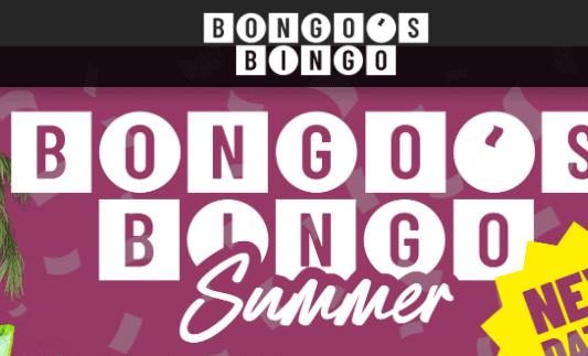 bongo's bingo front image