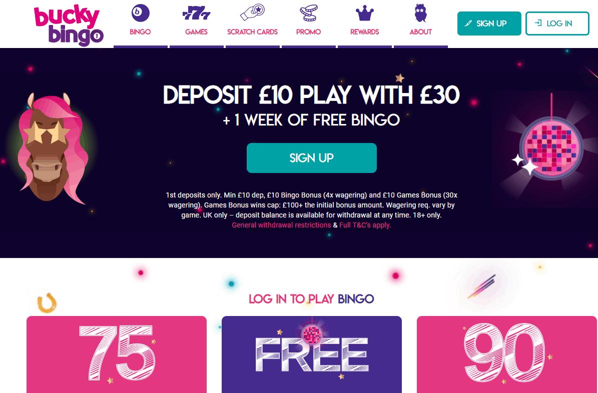 bucky bingo home