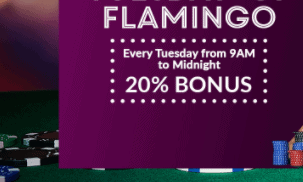 royal flamingo casino front image