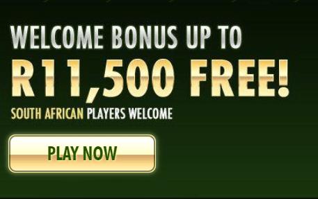 springbok casino front image
