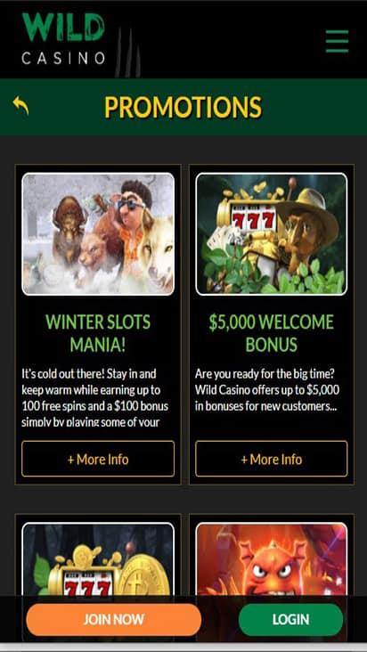 Wild Casino promo mobile