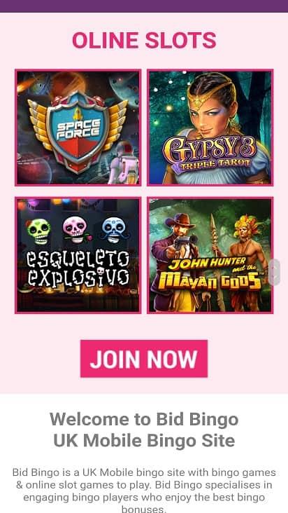 Bid bingo games page