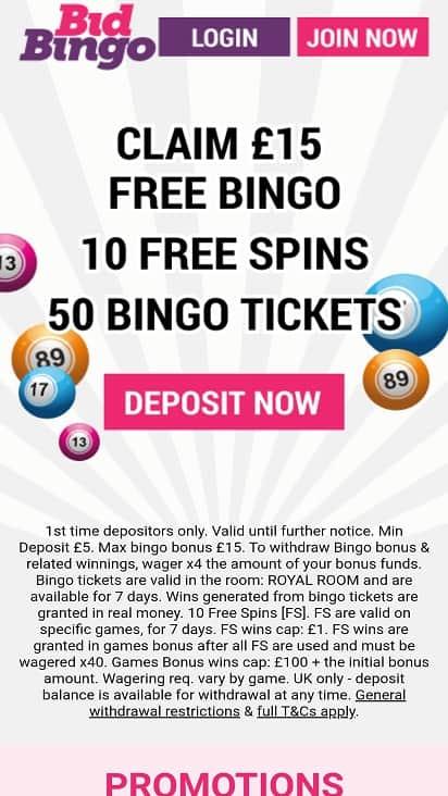 Bid bingo home page