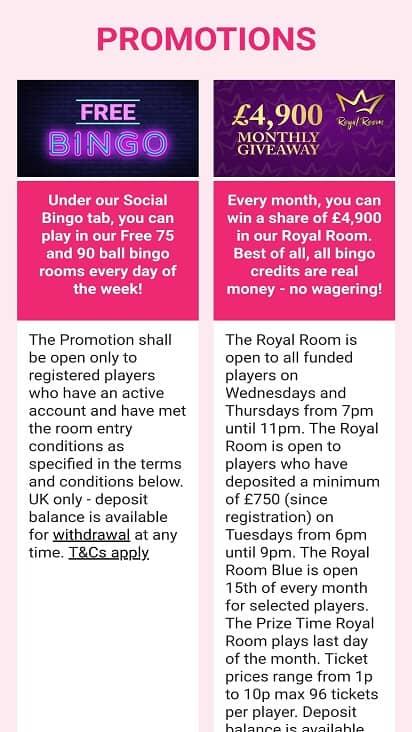 Bid bingo promotions page