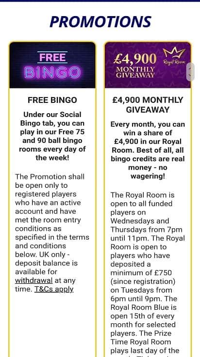 Bingo Zino Promotions page