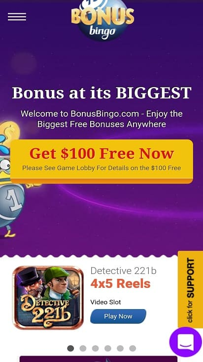 Bingo bonus home page