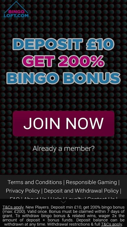 Bingoloft home page