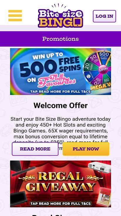 Bite size bingo promotions page