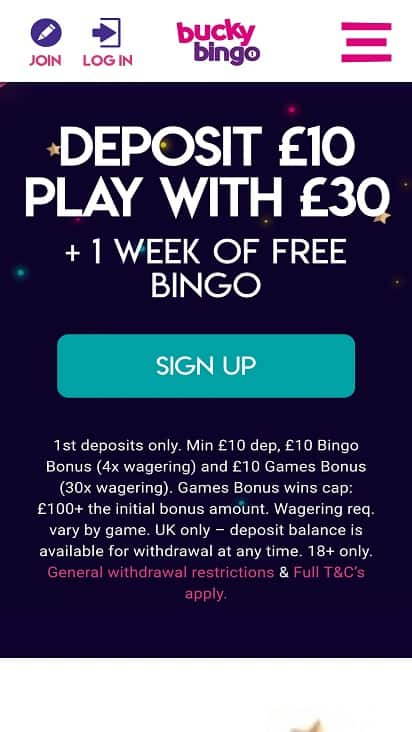 Bucky bingo home page