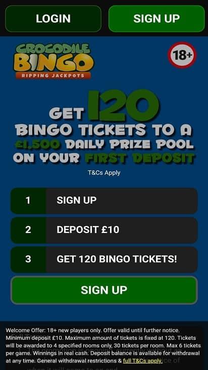 Crocodile bingo home page