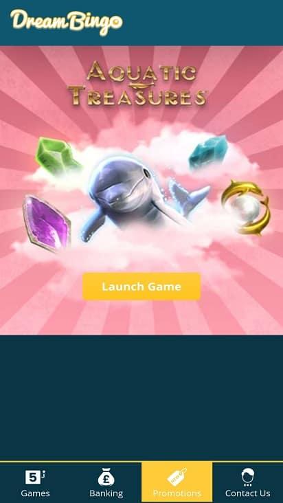 Dream bingo promotions page