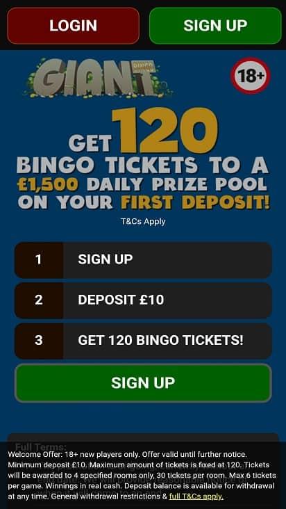 Giant bingo home page