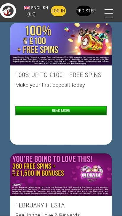 Hippo zone promotions page