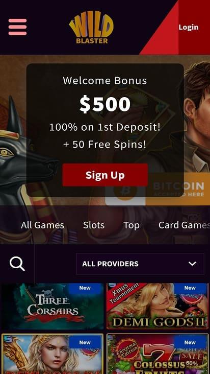 Wild blaster home page