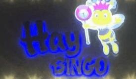 hay bingo limited logo